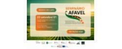 23/09/21 | Seminário Final AFAVEL